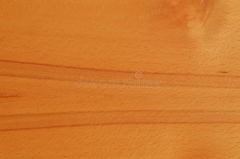 Textura da madeira do hornbeam de Brown fotografia de stock