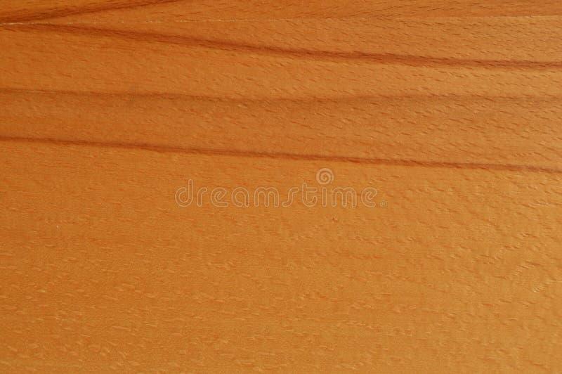 Textura da madeira do hornbeam de Brown fotos de stock royalty free
