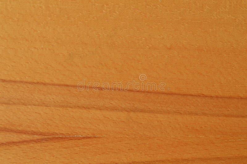 Textura da madeira do hornbeam de Brown foto de stock royalty free