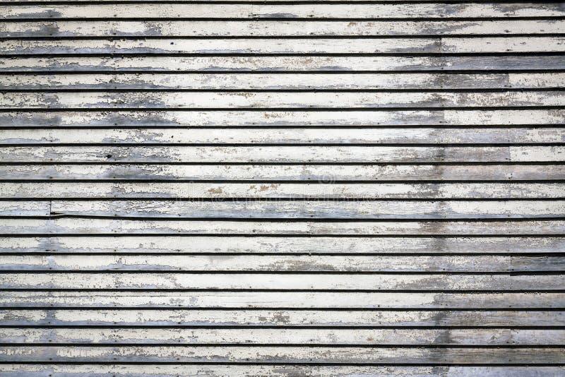 Textura da madeira do tapume imagem de stock royalty free