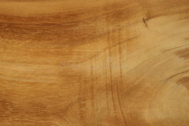 A textura da madeira maciça Fundo imagens de stock royalty free