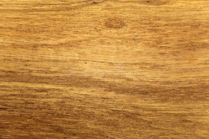 Textura da madeira tropical fotografia de stock royalty free