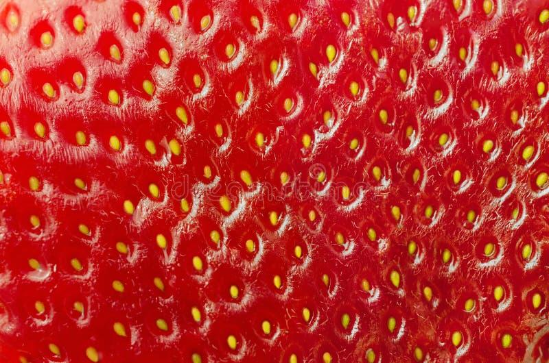 Textura da morango - macro fotografia de stock
