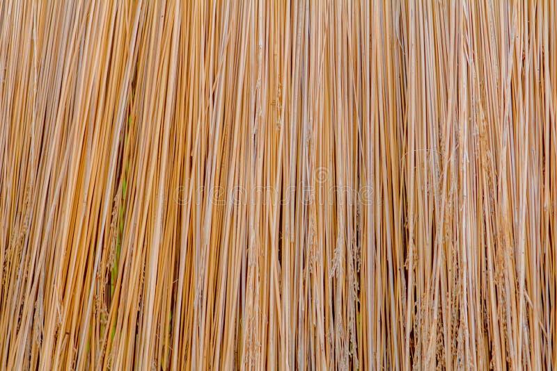 Textura da palha do projeto do fundo do telhado imagem de stock