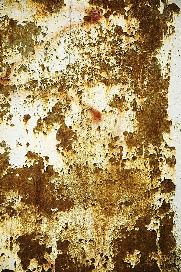 Download Textura Da Parede Da Oxidação Imagem de Stock - Imagem de branco, oxidado: 10064083