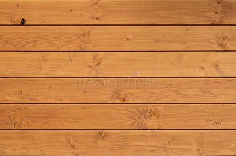 A textura da parede de madeira resistida Cerca de madeira envelhecida da prancha de placas lisas horizontais com a abelha pequena foto de stock royalty free