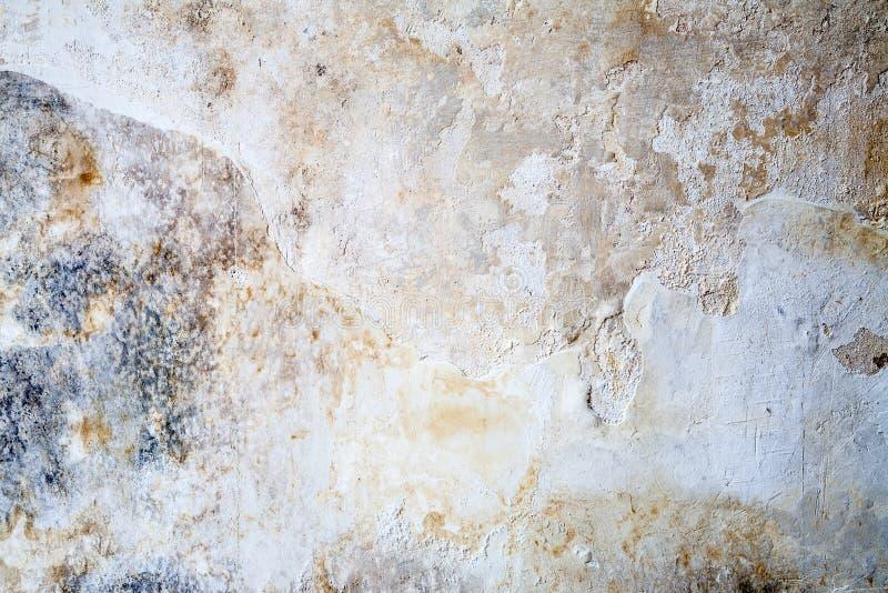 Textura da parede do Grunge do emplastro imagem de stock