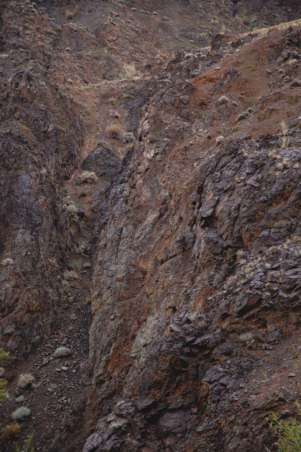 A textura da pedra marrom escura molhada com musgo Close-up da rocha imagens de stock royalty free