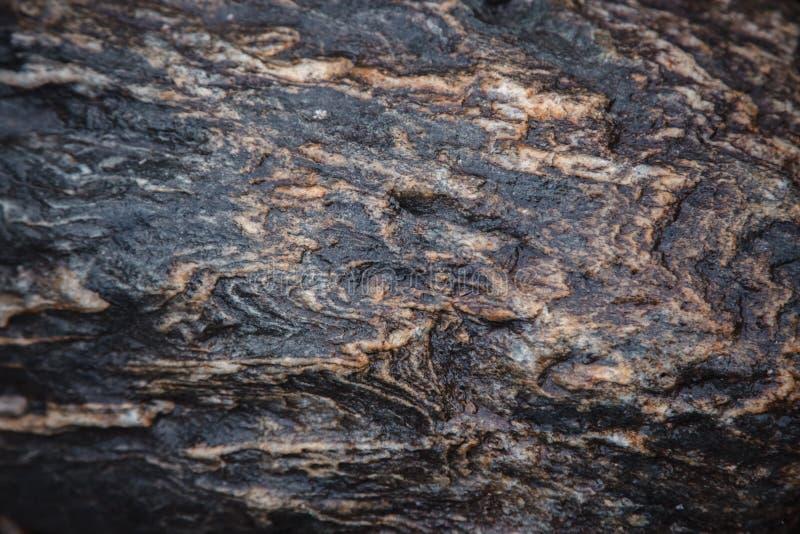 A textura da pedra marrom escura molhada com musgo Close-up da rocha fotografia de stock