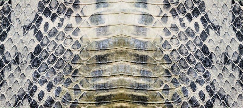 Textura da pele de serpente imagem de stock royalty free