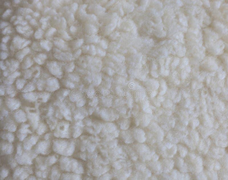 Textura da pele no branco - como um carneiro fotografia de stock royalty free