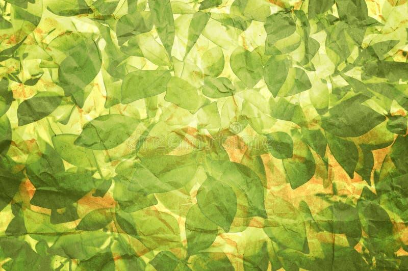 Textura da planta no papel velho imagem de stock