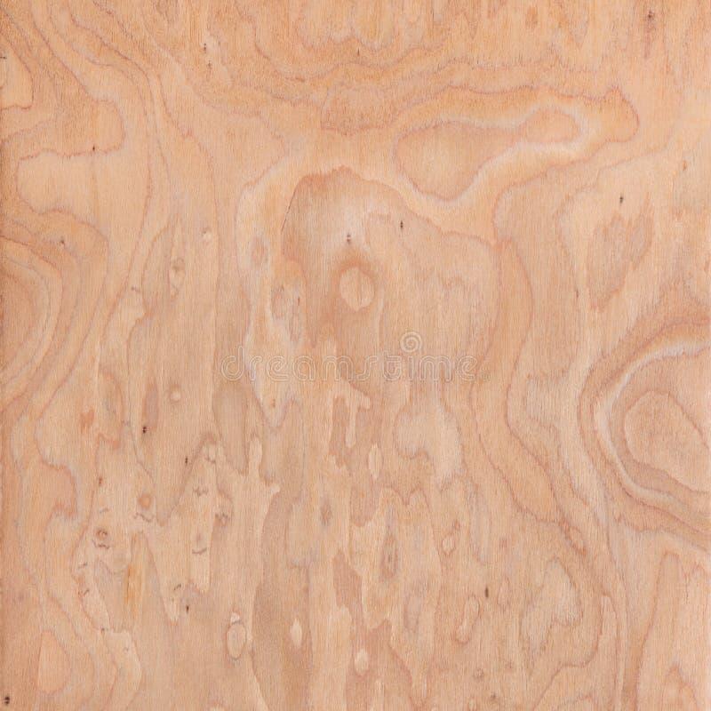 Textura da raiz, textura de madeira fotos de stock royalty free