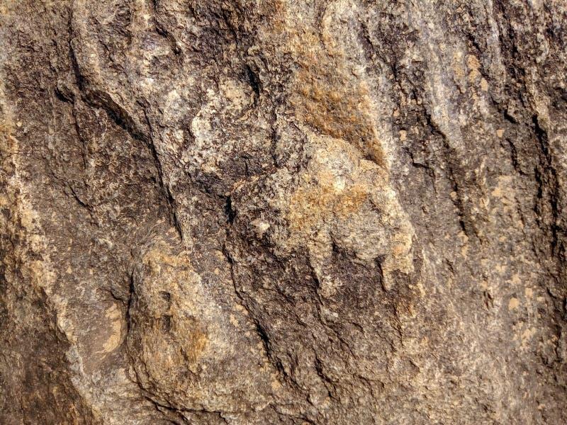 Textura da rocha na praia imagens de stock
