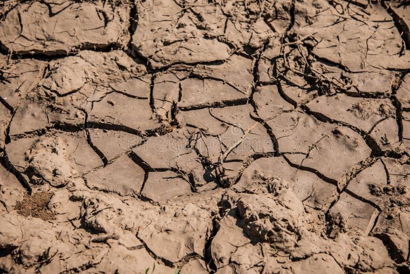 Textura da sujeira da lama Terra rachada seca imagem de stock royalty free