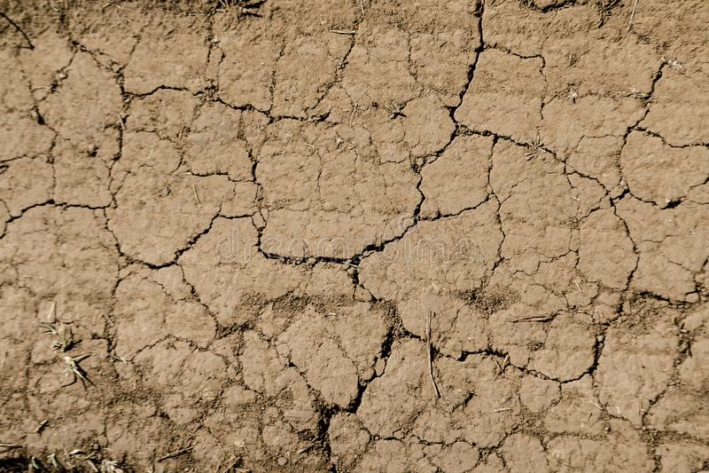 Textura da terra rachada marrom seca Falta da umidade no solo, seca O conceito da terra da desidratação Foto como o papel de pare foto de stock royalty free
