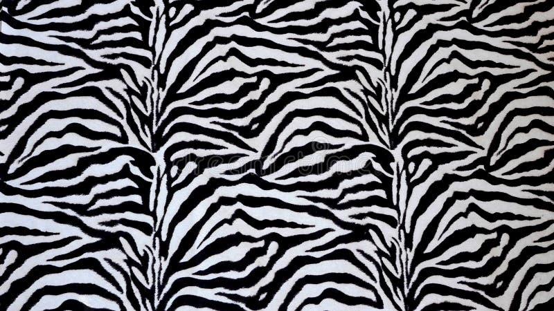 Textura da zebra fotos de stock