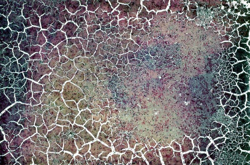 Textura danificada rachada Grunge do filme de cor fotografia de stock royalty free