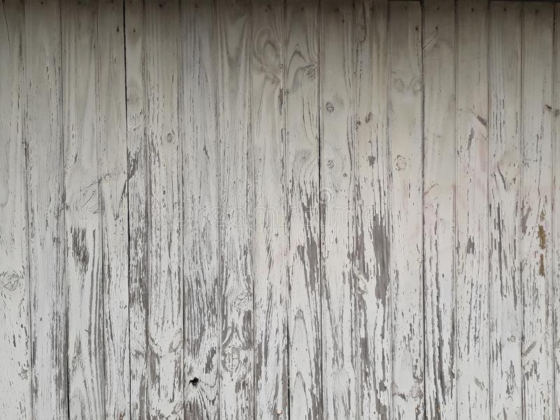 Textura de马德拉布朗卡/白色木纹理 图库摄影