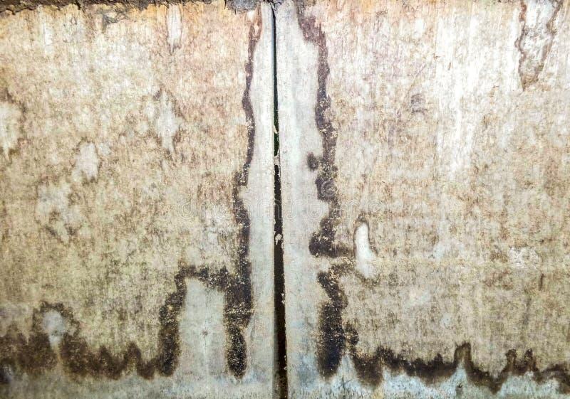 Textura de Backgroun de la madera vieja fotografía de archivo