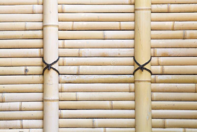Textura de bambú natural fotografía de archivo libre de regalías