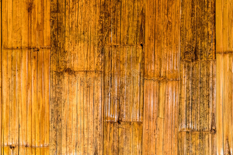 Textura de bambu da casca imagem de stock royalty free