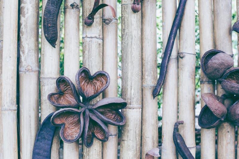 Textura de bambu da cerca da prancha do tom marrom velho para o fundo fotos de stock