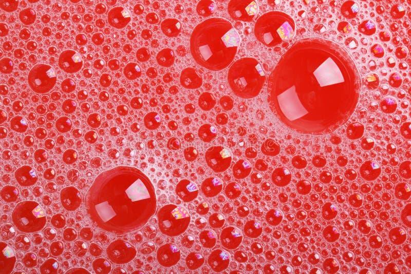Textura de bolhas de sabão no close-up vermelho do fundo fotografia de stock