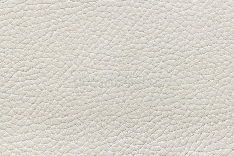 Textura de couro bege imagens de stock