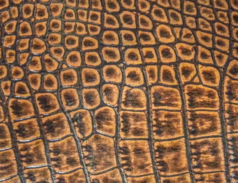 Textura de couro da serpente fotografia de stock royalty free