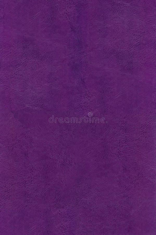 Textura de couro marrom violeta natural imagem de stock