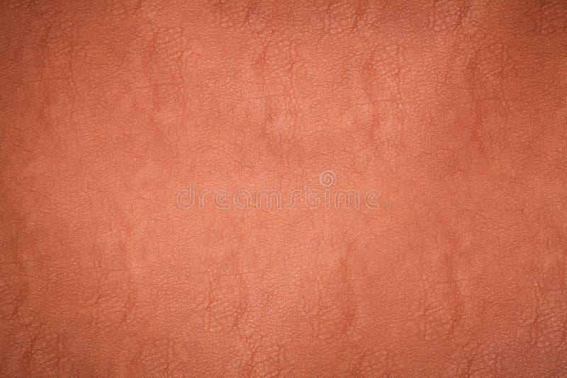 Download Textura de cuero imagen de archivo. Imagen de animal - 42442865