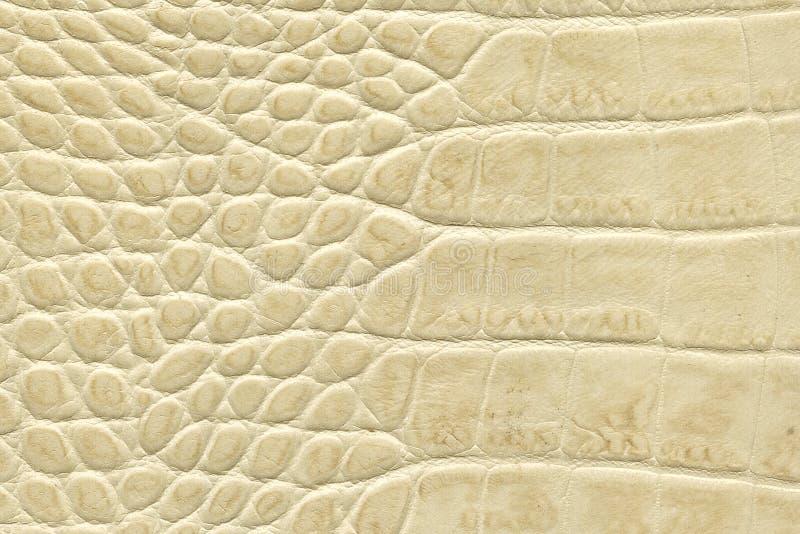 Textura de cuero amarillenta imagen de archivo