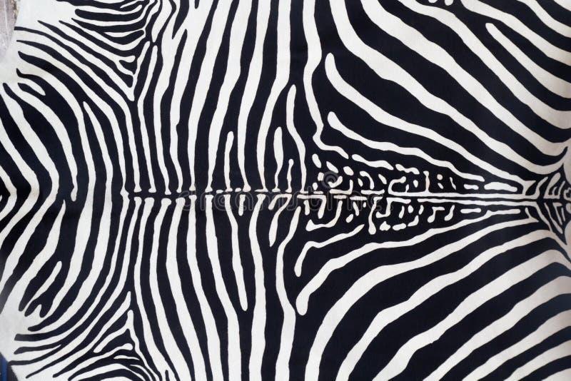 Textura de cuero de la piel de la cebra pintada foto de archivo libre de regalías