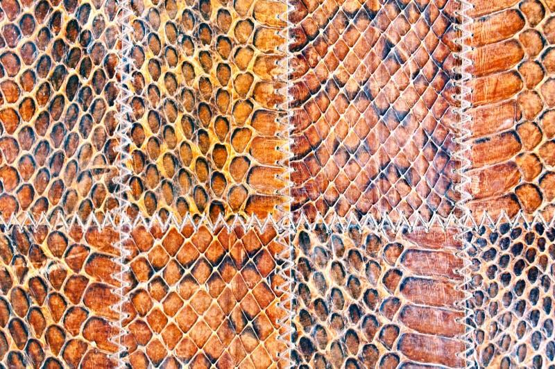 Textura de cuero de la serpiente imágenes de archivo libres de regalías