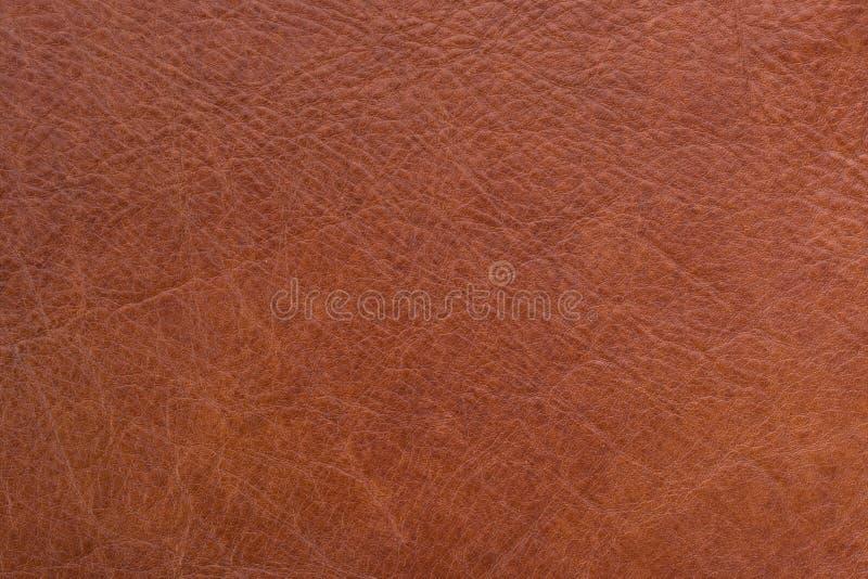 Textura de cuero natural imagen de archivo