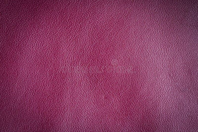 Textura de cuero pintada imagen de archivo libre de regalías