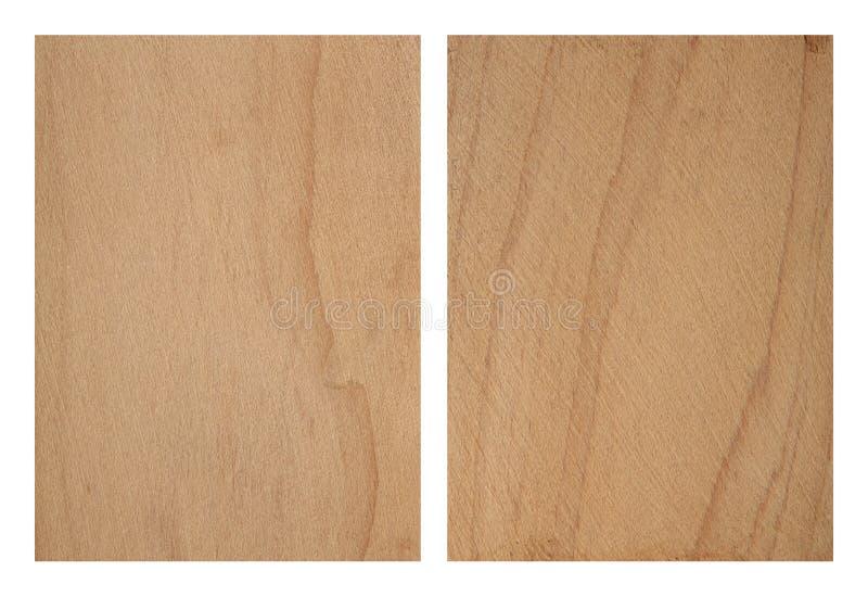 Textura de Cypress fotografia de stock royalty free