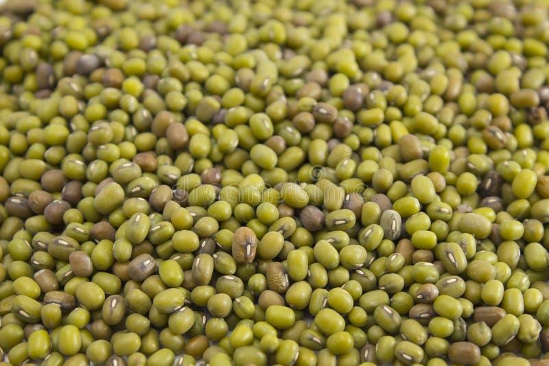 Textura de feijões de mung verdes foto de stock