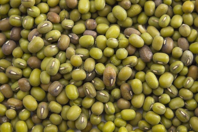 Textura de feijões de mung verdes fotografia de stock