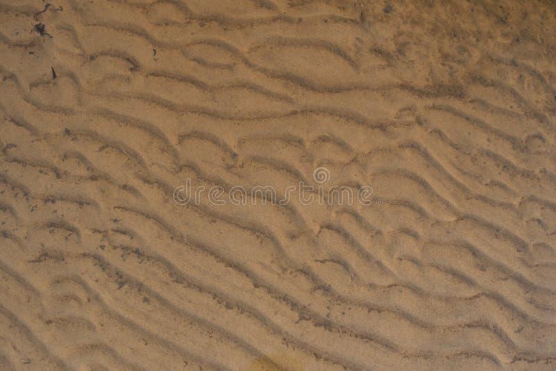 Textura de la arena mojada imagen de archivo