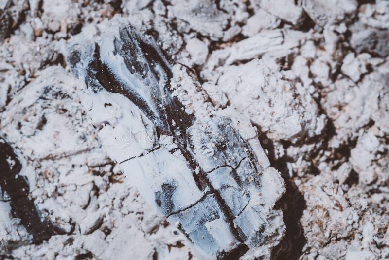 Textura de la ceniza de carbón foto de archivo libre de regalías