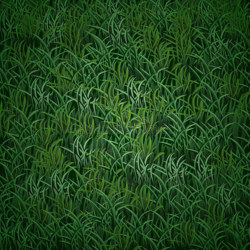 Textura de la hierba del vector imágenes de archivo libres de regalías