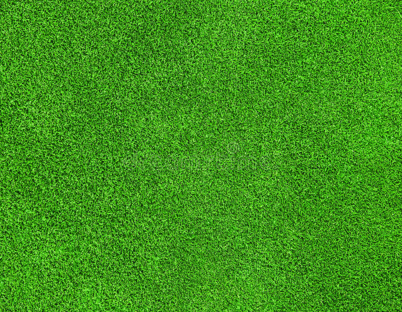 Textura de la hierba verde imagenes de archivo