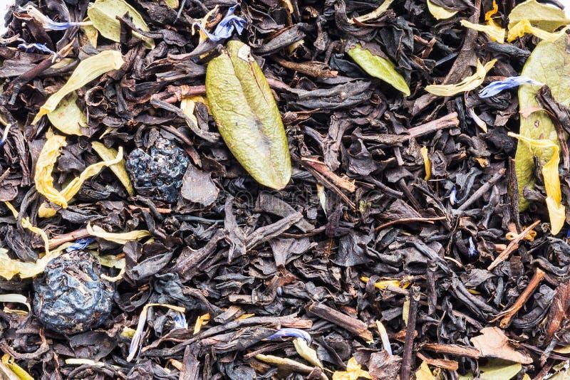 Textura de la infusión de hierbas negra seca con las bayas y las hojas de los arándanos y de los arándanos, abstracción de la beb fotos de archivo