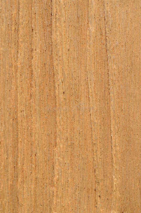 Textura de la madera 7 fotos de archivo libres de regalías