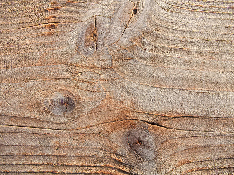 Textura de la madera de deriva, primer de madera del fondo de la deriva áspera del grano imagen de archivo libre de regalías