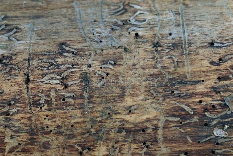 Textura de la madera vieja imágenes de archivo libres de regalías
