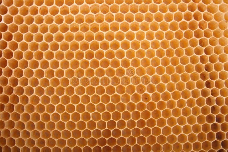 Textura de la miel fotografía de archivo