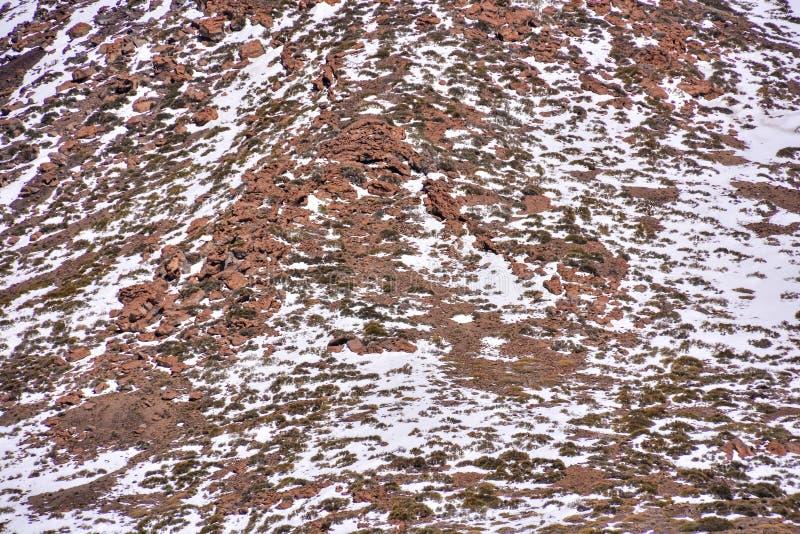 Textura de la nieve para el fondo fotos de archivo